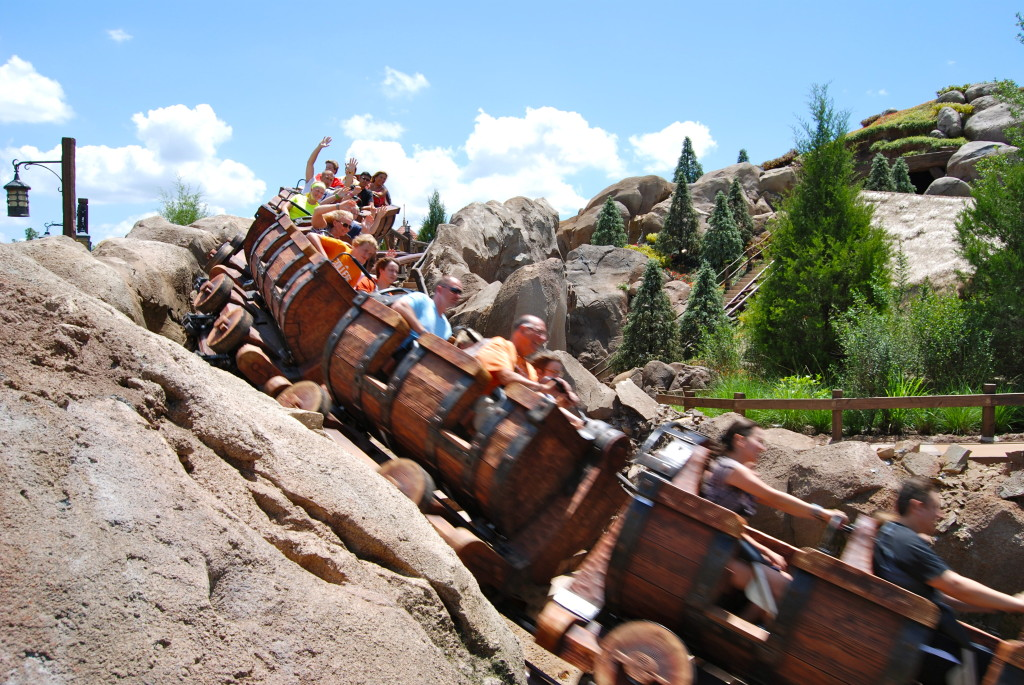 How to Plan the Ultimate Walt Disney World Trip for Adults   The Charming Detroiter