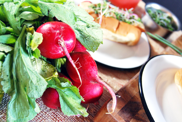 Sautéed Shrimp Rolls with Ancho Aioli, Radishes, and Microgreens   The Charming Detroiter