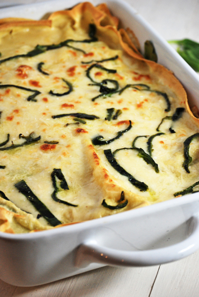 This white shredded chicken lasagna features a beautiful béchamel sauce paired with shredded chicken, roasted poblano peppers, and fresh spinach.